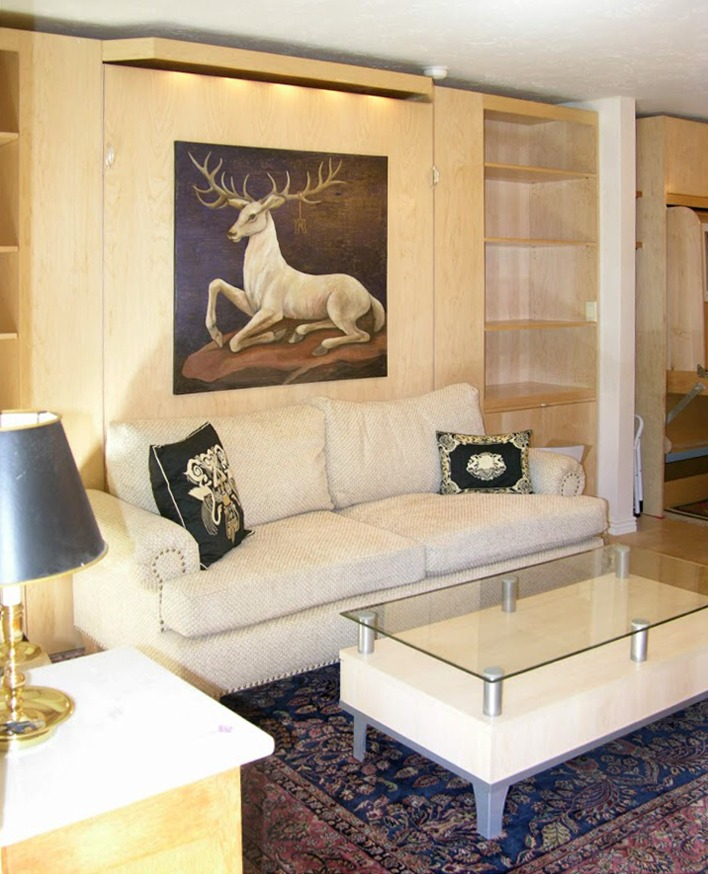Suzanne's Studio in Aspen has Designer Sofa Murphy Bed